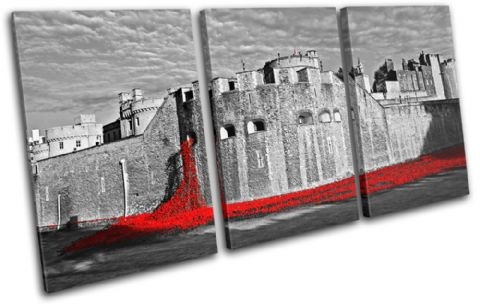 Tower of London Poppies City - 13-2240(00B)-TR21-LO